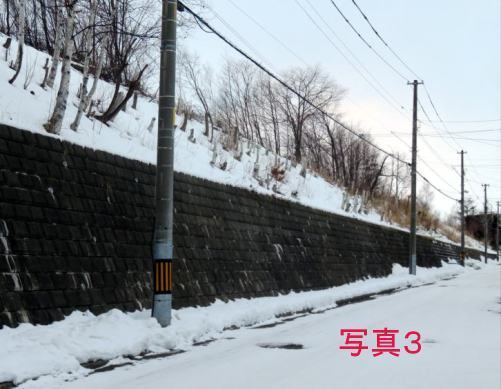 0111-yuki.jpg