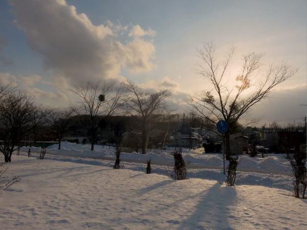 0309-yadorigi.jpg