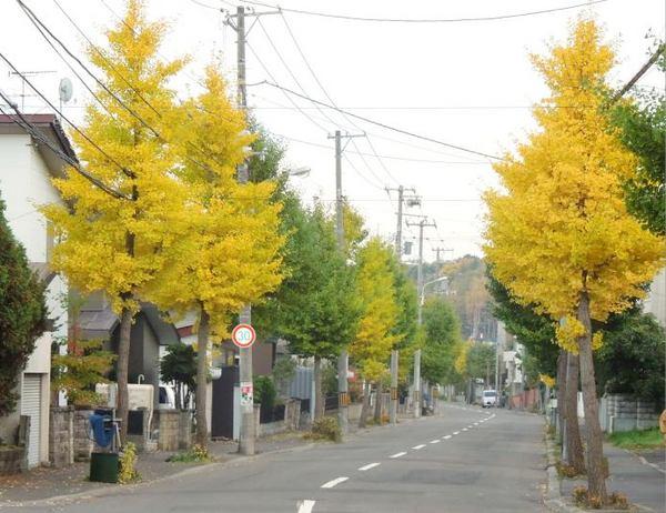 1023-ichou-2.jpg