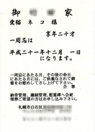 1201-isshuuki.jpg