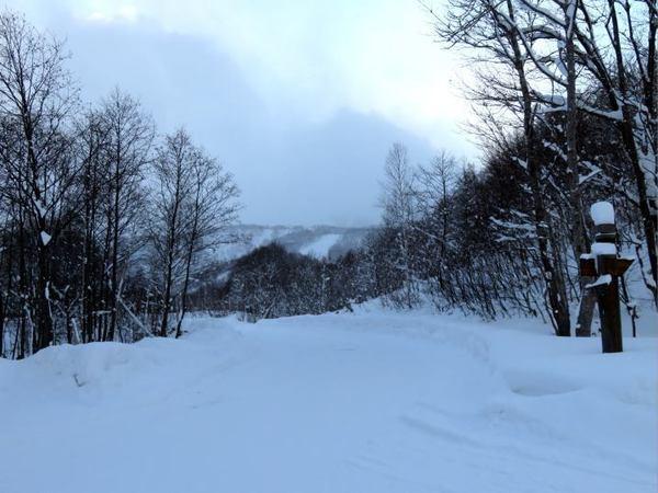 1227-ski.jpg