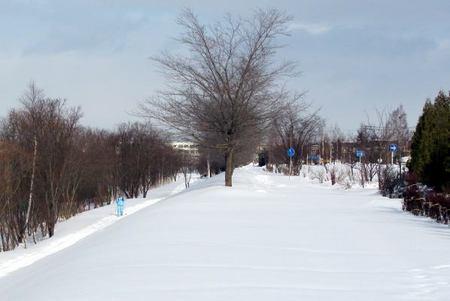 124-ski-.jpg