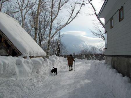 131-snow-1.jpg