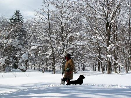 131-snow-5.jpg