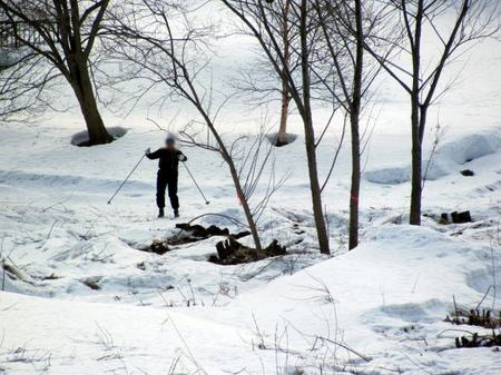 319-aruku-ski.jpg