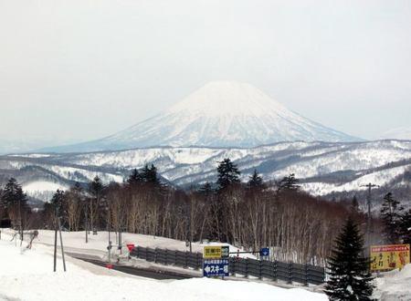 325-youtei-nakayama.jpg