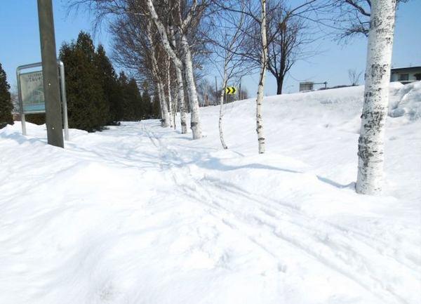 328-ski.jpg