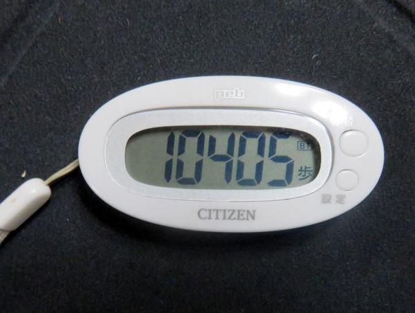 510-10000.jpg