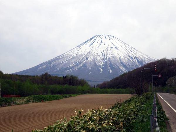 512-youtei-kimo.jpg