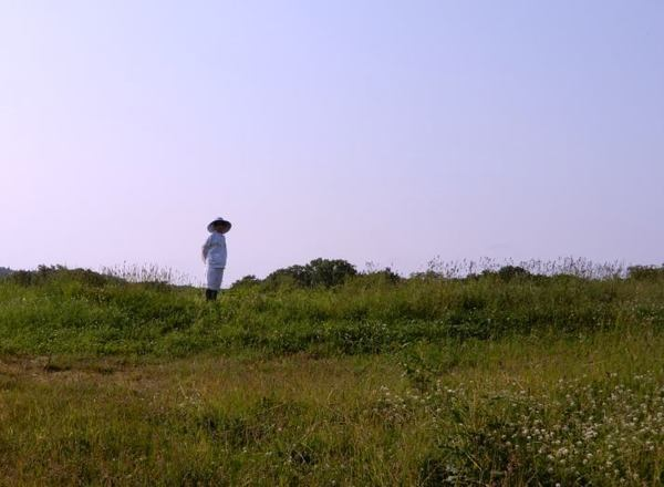 706-sougenn-tatu.jpg