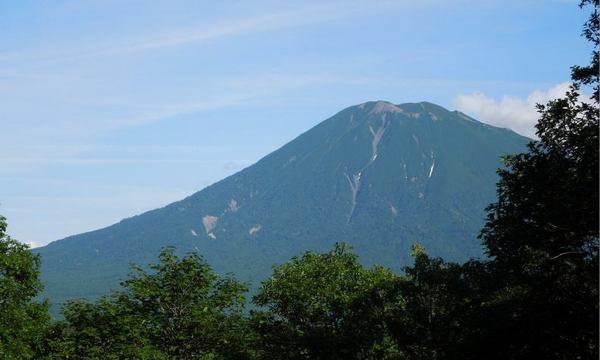 710-youtei-4.jpg