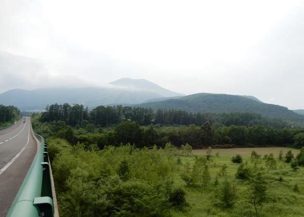 730-ann.jpg