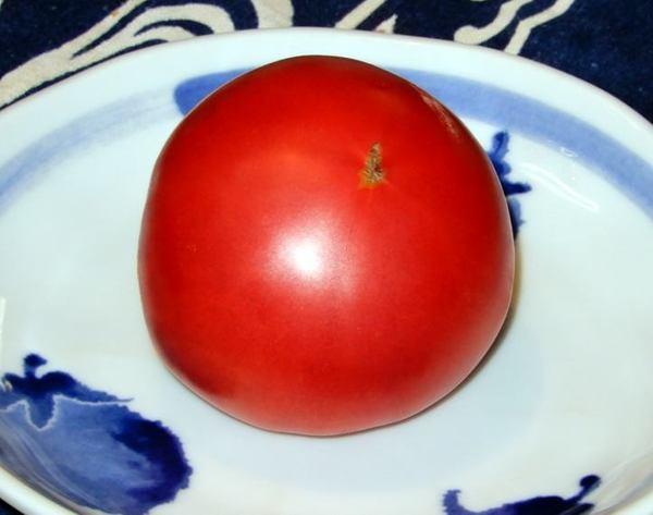 821-tomato.jpg