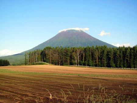926-youtei-kuma.jpg