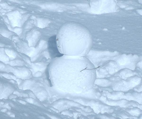 snow-man.jpg