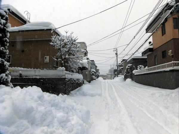 yukimichi.jpg